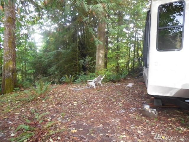 45019 Tillicum Trail, Concrete, WA 98237 (#1208504) :: Ben Kinney Real Estate Team