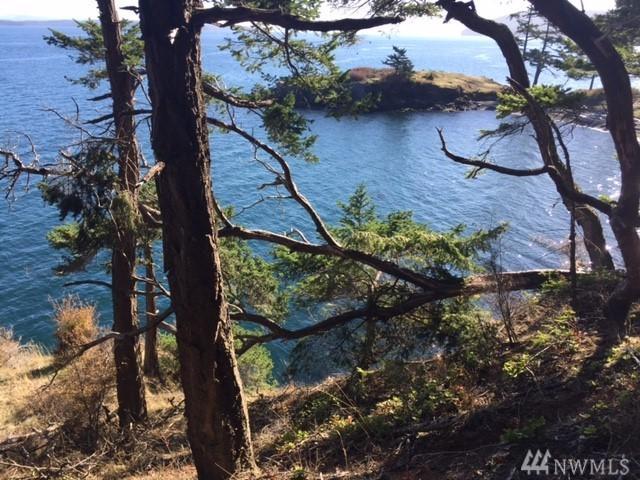 0 San Juan Dr, San Juan Island, WA 98250 (#1211320) :: Keller Williams - Shook Home Group