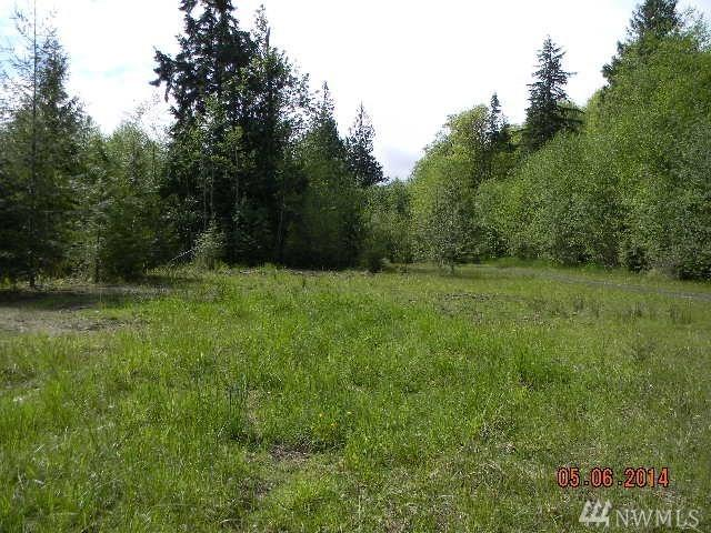 5051 Skidder Hill, Quilcene, WA 98376 (#1217346) :: Tribeca NW Real Estate