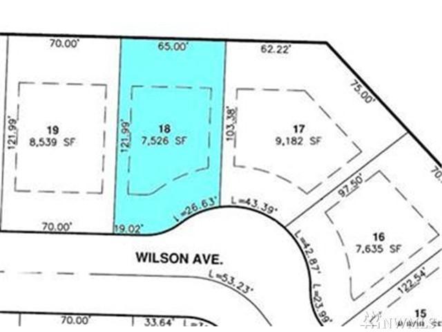1338 Wilson Ave, Blaine, WA 98230 (#1218906) :: Ben Kinney Real Estate Team