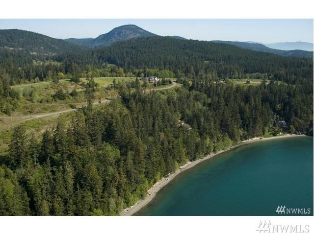 15781 S Deception Shores Drive, Anacortes, WA 98221 (#1219633) :: The Craig McKenzie Team