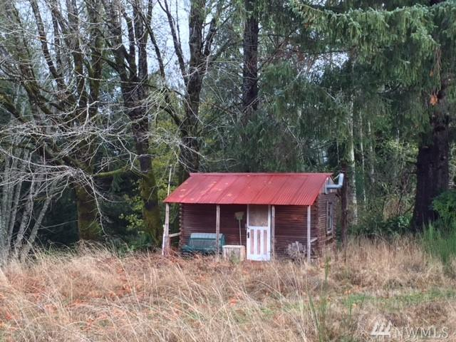 231 Fernandes Rd, Clallam Bay, WA 98326 (#1219952) :: Kimberly Gartland Group