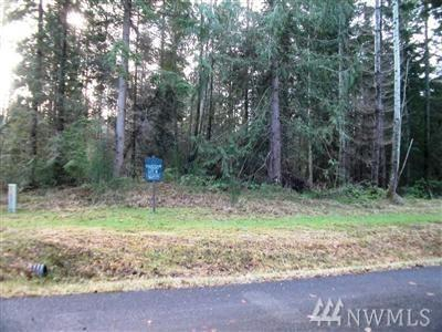 8404 NE Broughton (Lot  4), Hansville, WA 98340 (#1220030) :: Brandon Nelson Partners