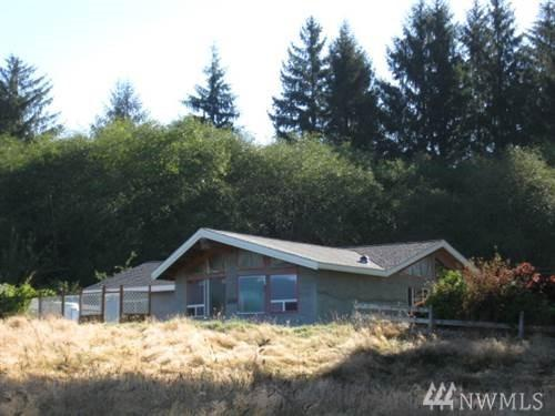 323 Lund Rd, Cosmopolis, WA 98537 (#1220512) :: The Snow Group at Keller Williams Downtown Seattle
