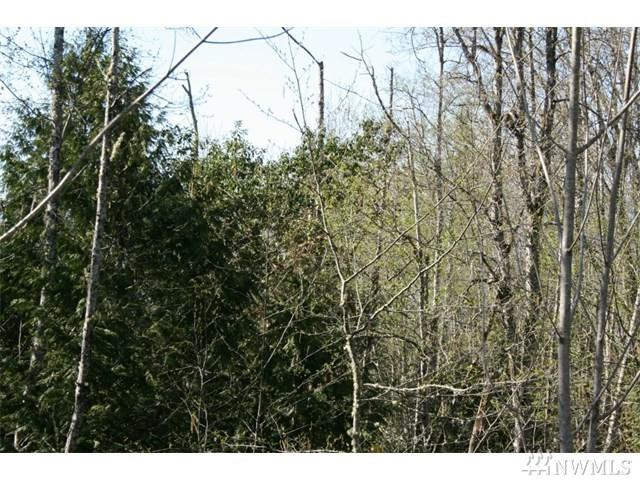 111010 NW Wade Rd Lot10, Silverdale, WA 98383 (#1226657) :: Priority One Realty Inc.