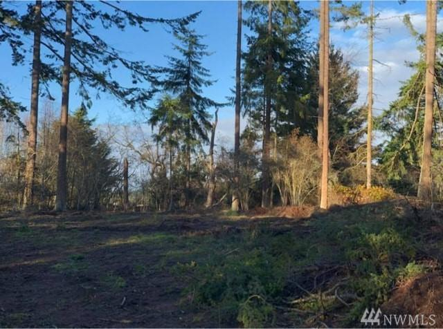 83 Percy Lane, Sequim, WA 98382 (#1226888) :: Northwest Home Team Realty, LLC