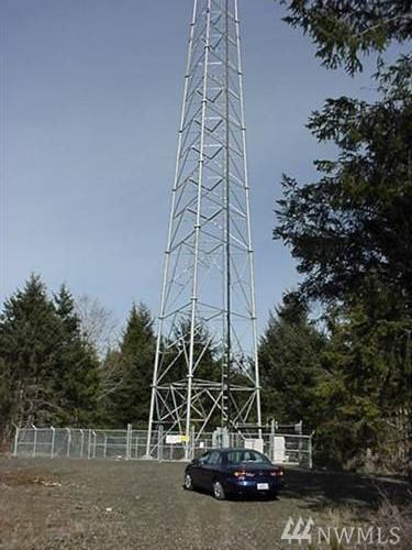 25 Alder Hill Ln, Aberdeen, WA 98520 (#1230535) :: Brandon Nelson Partners
