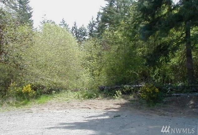 1517 195th Ave KP, Lakebay, WA 98349 (#1231057) :: Homes on the Sound