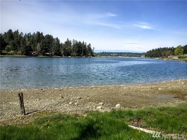 11120 Burton Rd, Anderson Island, WA 98303 (#1233797) :: Homes on the Sound