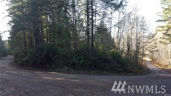 200 E. Buckboard Dr., Grapeview, WA 98524 (#1233941) :: Homes on the Sound