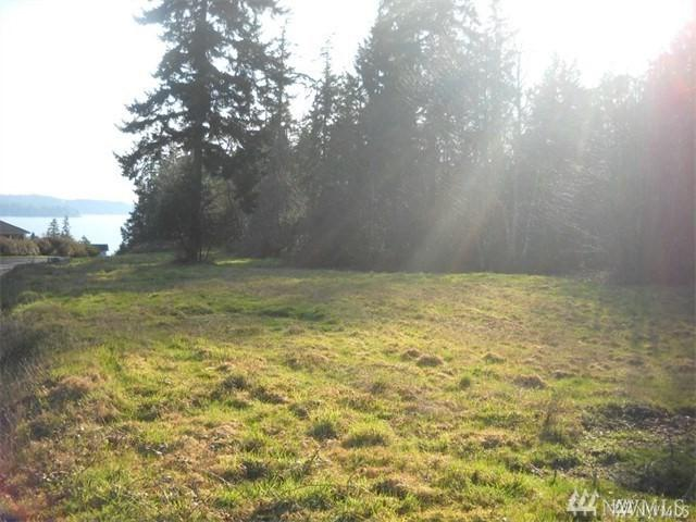 12609 101ST Av Ct NW, Gig Harbor, WA 98329 (#1235452) :: Homes on the Sound