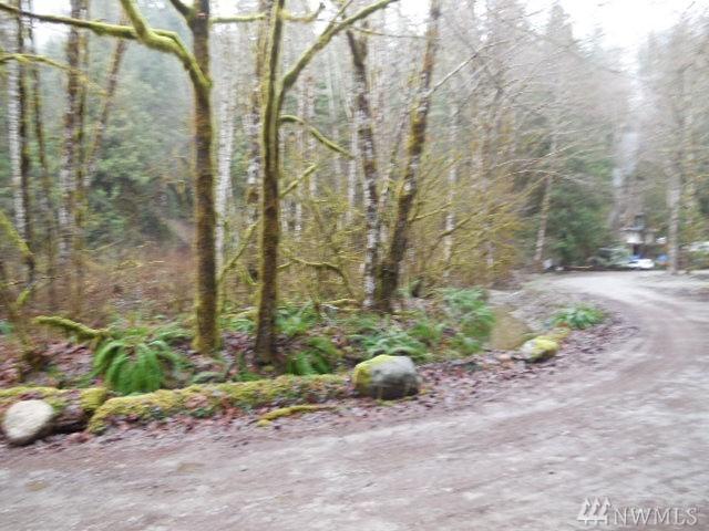 0 Lookout Mountain Loop, Marblemount, WA 98267 (#1236152) :: Real Estate Solutions Group