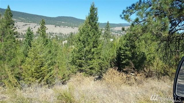 25 High Valley Rd W, Tonasket, WA 98855 (#1237745) :: Pickett Street Properties