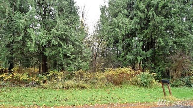 44021 SE 150th St, North Bend, WA 98045 (#1239347) :: The DiBello Real Estate Group