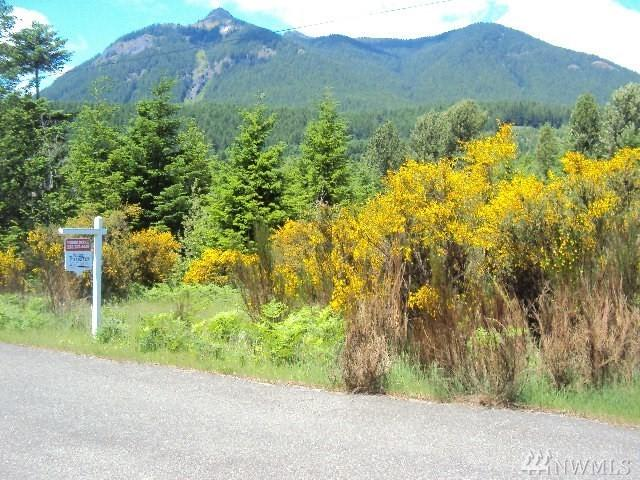 32-& 33 Lot   Jack Fir Ct E, Packwood, WA 98937 (#1239751) :: Brandon Nelson Partners