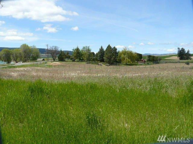 414-w Locust, Waterville, WA 98858 (#1244763) :: Icon Real Estate Group