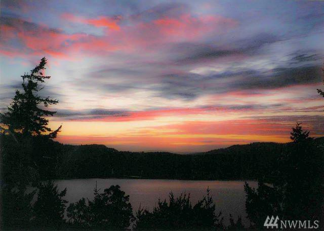 339 Highlands Dr, Orcas Island, WA 98245 (#1245773) :: Homes on the Sound