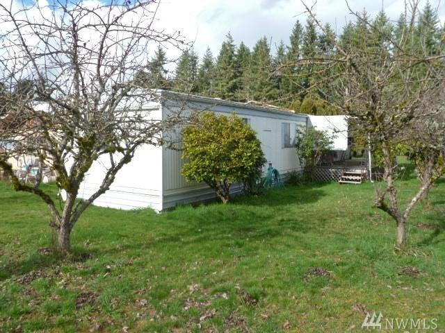19139 Guava St SW, Rochester, WA 98579 (#1246871) :: Homes on the Sound