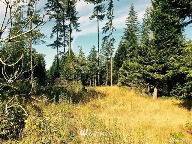 40 Tall Timber Lane - Photo 1