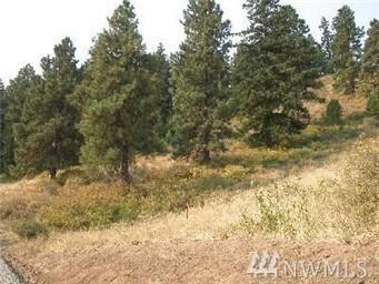 510 Low Rd, Cle Elum, WA 98922 (#1247431) :: Homes on the Sound