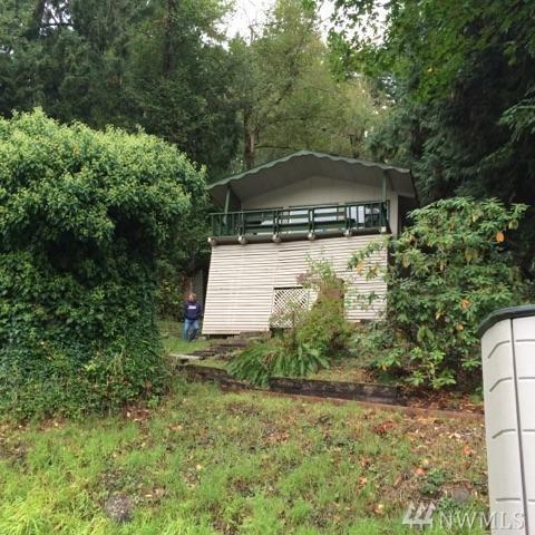 39106 E Ski Park Rd E, Eatonville, WA 98328 (#1247845) :: Homes on the Sound