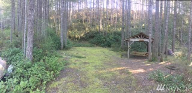 230 N Glenwood Rd, Hoodsport, WA 98548 (#1248841) :: Homes on the Sound