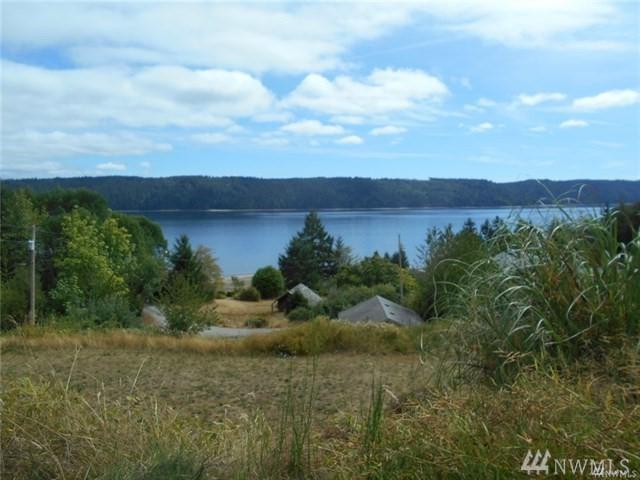 150 N Terrace Rd, Hoodsport, WA 98548 (#1249804) :: The Robert Ott Group