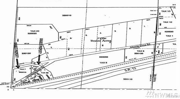 486 Monte Brady Rd., Montesano, WA 98563 (#1250620) :: Morris Real Estate Group