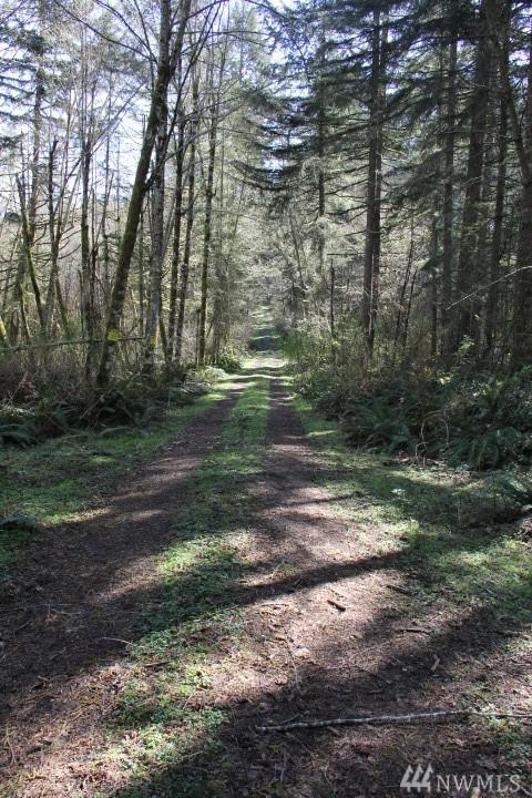 0-Lot 1 Zangle Rd NE, Olympia, WA 98506 (#1250768) :: Northwest Home Team Realty, LLC