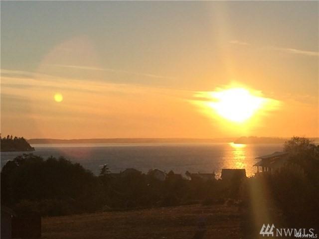 1243 Olsen Rd, Camano Island, WA 98282 (#1258253) :: Homes on the Sound