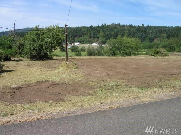 121 Carrolls Ave, Carrolls, WA 98632 (#1259983) :: Priority One Realty Inc.