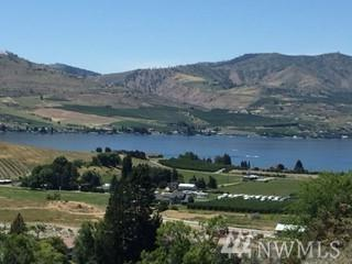 116 Hillcrest Place, Chelan, WA 98816 (#1261128) :: Keller Williams Everett