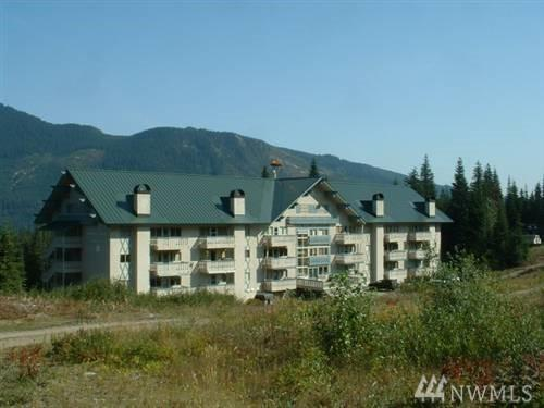 220 Tanner Way #205, Snoqualmie Pass, WA 98068 (#1262716) :: Icon Real Estate Group