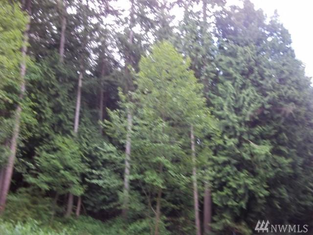 16000 E Lake Goodwin Rd, Stanwood, WA 98292 (#1264101) :: Homes on the Sound