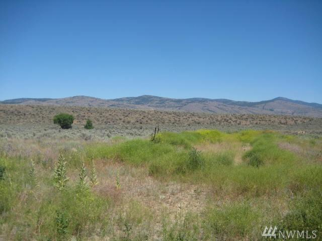 0-XXX Johnson Creek, Omak, WA 98841 (#1265746) :: Ben Kinney Real Estate Team