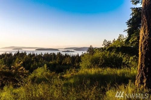 1 Outlook Lane, Friday Harbor, WA 98250 (#1266818) :: Homes on the Sound