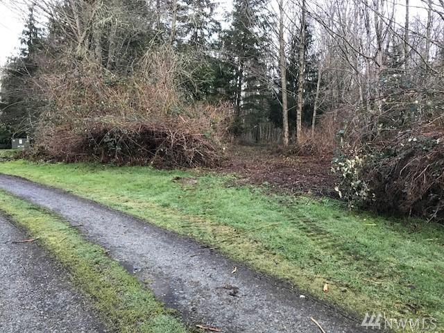 17 Lot 17 A Eagle Ridge Dr, Camano Island, WA 98282 (#1267356) :: Better Homes and Gardens Real Estate McKenzie Group