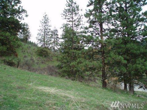 4681 Brisky Canyon Rd, Cashmere, WA 98815 (#1269729) :: The Robert Ott Group