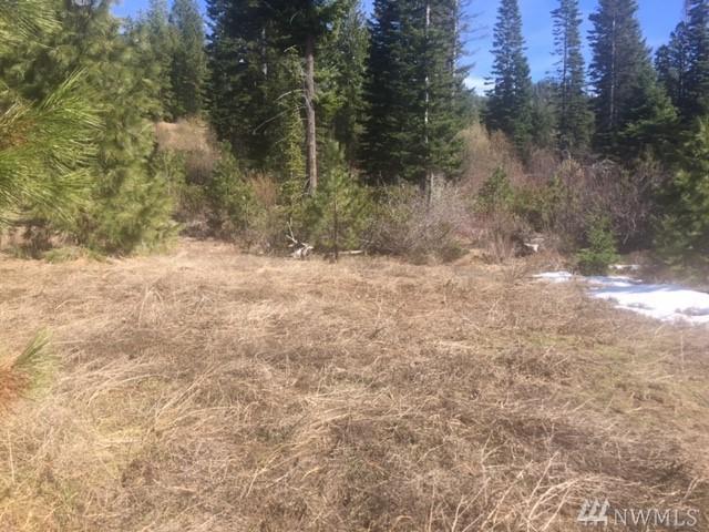 5-B Breckenridge Dr, Ronald, WA 98940 (#1272396) :: Coldwell Banker Kittitas Valley Realty
