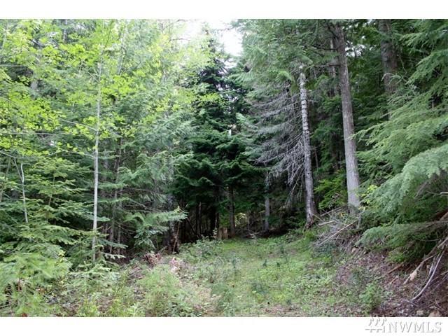 270 Mountain Home Lane, Easton, WA 98925 (#1273910) :: Coldwell Banker Kittitas Valley Realty