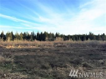 1088 Peter Hagen Rd NW, Seabeck, WA 98380 (#1274215) :: Mike & Sandi Nelson Real Estate