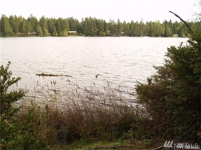 1911 E Trails End Dr SE, Belfair, WA 98528 (#1274982) :: Priority One Realty Inc.