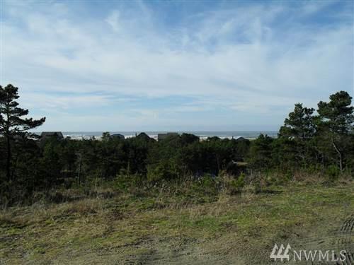 29104 J Lane, Ocean Park, WA 98640 (#1275021) :: Carroll & Lions