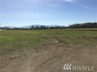 0-Lot 4 Kok Rd, Lynden, WA 98264 (#1275933) :: The Snow Group at Keller Williams Downtown Seattle