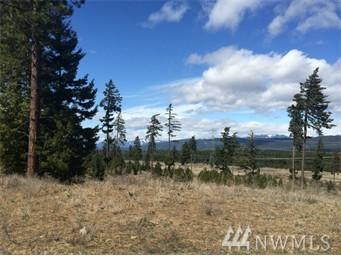 8430 Upper Peoh Point Rd, Cle Elum, WA 98922 (#1276810) :: Coldwell Banker Kittitas Valley Realty