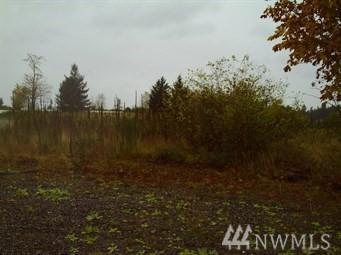 22314 Aislinn Oir Lane SE, Yelm, WA 98597 (#1278971) :: Crutcher Dennis - My Puget Sound Homes