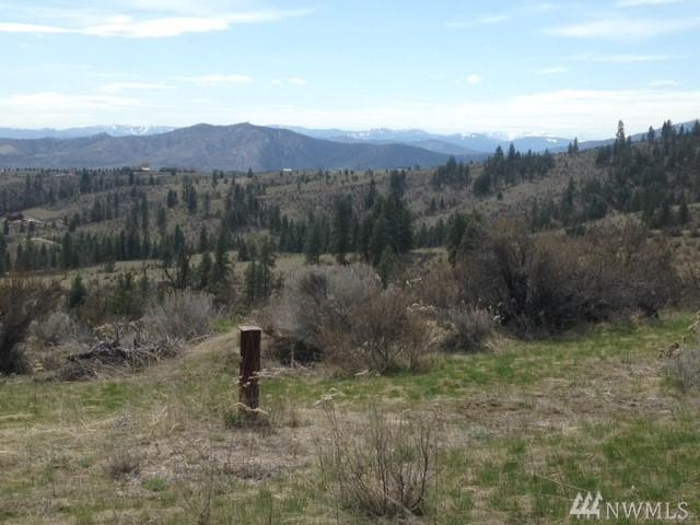 0 Coyote Trail Rd, Manson, WA 98831 (#1279408) :: Crutcher Dennis - My Puget Sound Homes