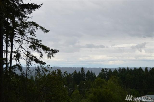 0 Lot D Dickey Rd NW, Silverdale, WA 98383 (#1279878) :: Costello Team