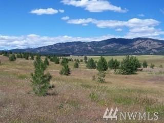 805-(Lot 1) Leo Lane, Cle Elum, WA 98922 (#1280890) :: Better Homes and Gardens Real Estate McKenzie Group