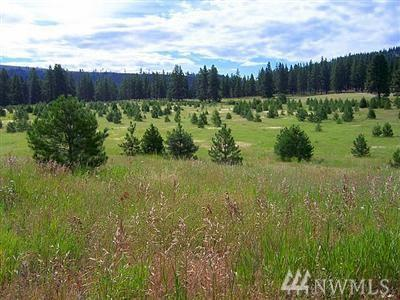 810-(Lot 5) Leo Lane, Cle Elum, WA 98922 (#1280907) :: Better Homes and Gardens Real Estate McKenzie Group